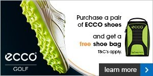 Free ECCO shoe bag